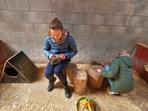 Cavia's en konijntjes aaien